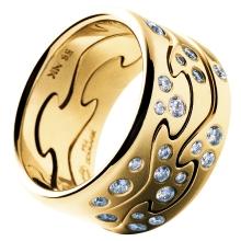 Ring fusion by Nina Koppel