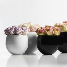 HOLMEGAARD Cocoon flower pot also available vase, bowl and dish