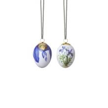 Easter Egg Iris