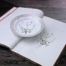Flora Danica and Book